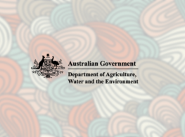 MEDIA RELEASE: Statement on environmental watering in the Lachlan River