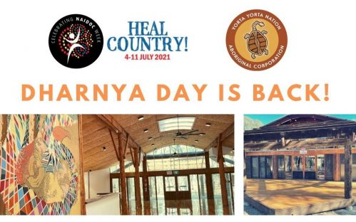 Dharnya Day is Back!